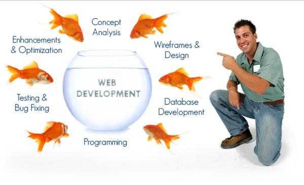 WebDev-Img-2