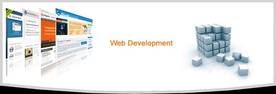 WebDev-Img-8